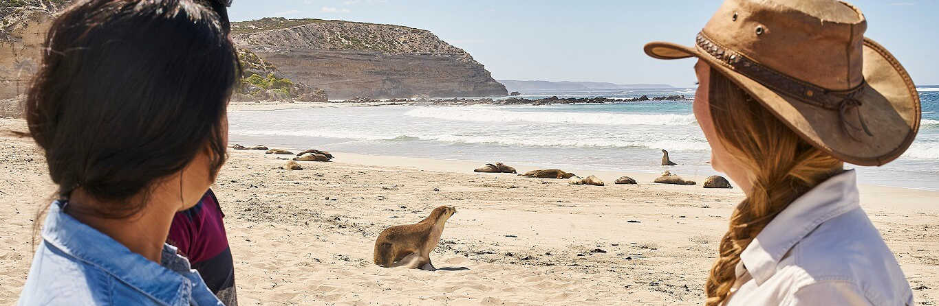 1 Day Kangaroo Island Tour 5