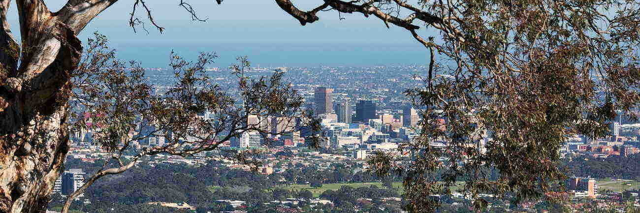 Adelaide City Tours